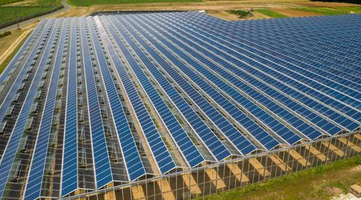 serre photovoltaique REDEN - les echos-